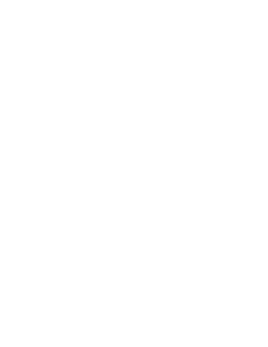 logo baronnes george blanc